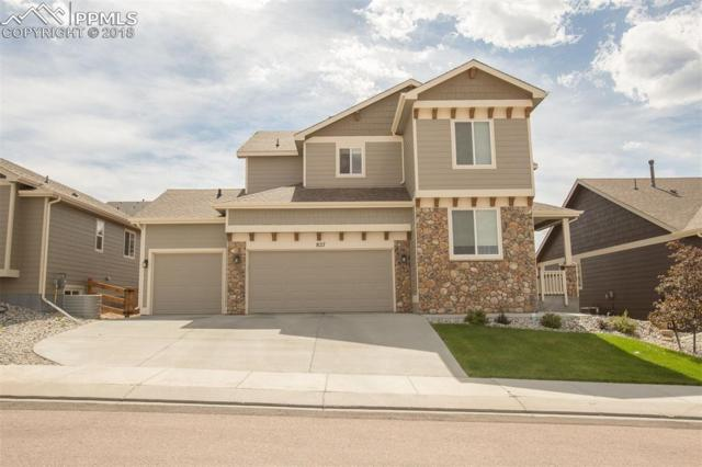 827 Tailings Drive, Monument, CO 80132 (#8379476) :: The Peak Properties Group
