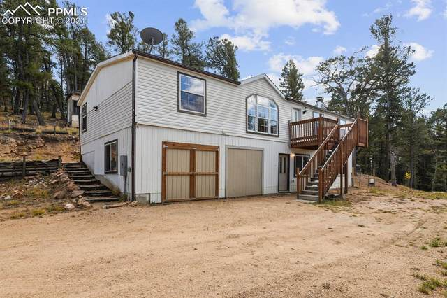 10 High Road Drive, Divide, CO 80814 (#8379511) :: CC Signature Group