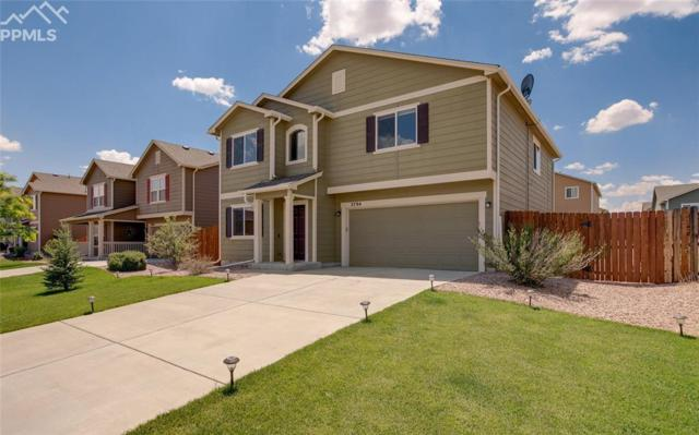 3794 Winter Sun Drive, Colorado Springs, CO 80925 (#8380562) :: Harling Real Estate
