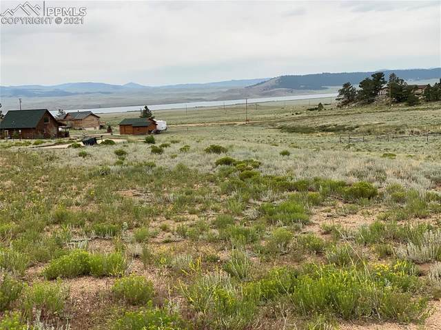151 Topaz Road, Lake George, CO 80827 (#8381517) :: Fisk Team, eXp Realty