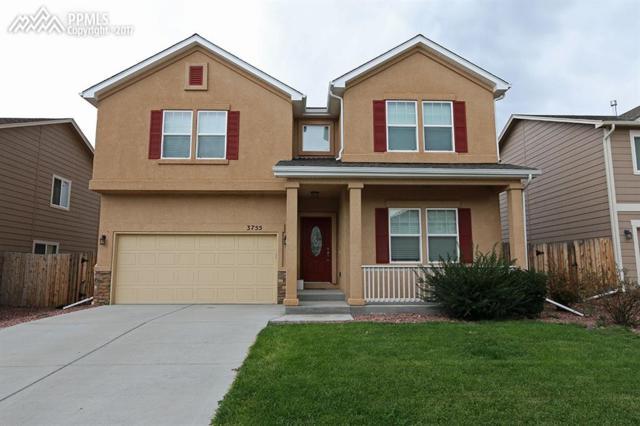 3755 Reindeer Circle, Colorado Springs, CO 80922 (#8383792) :: 8z Real Estate
