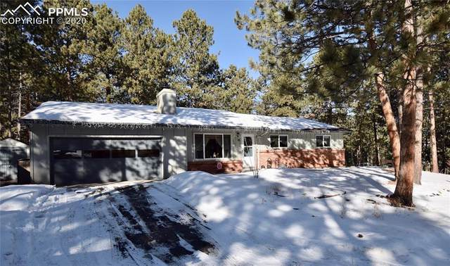 320 N Elm Street, Woodland Park, CO 80863 (#8384856) :: Jason Daniels & Associates at RE/MAX Millennium