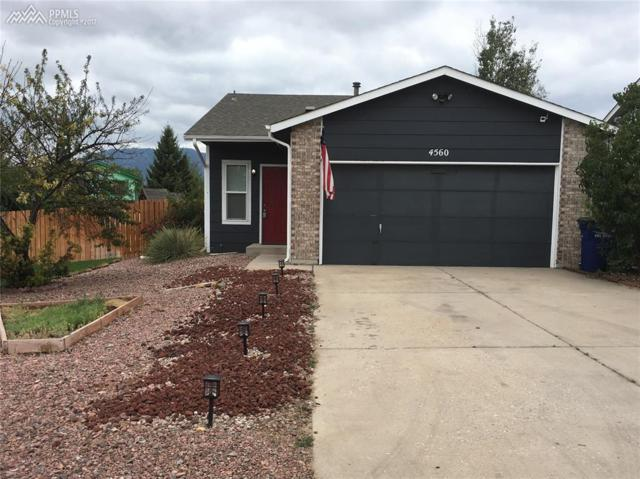 4560 Forsythe Drive, Colorado Springs, CO 80911 (#8385109) :: Action Team Realty