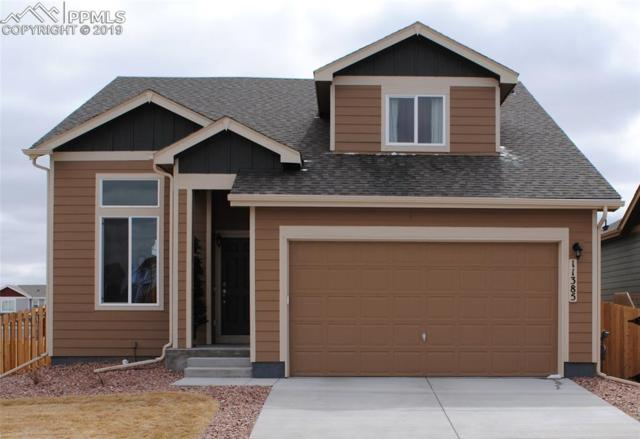 11385 Mt. Angel Heights, Peyton, CO 80831 (#8385417) :: The Treasure Davis Team