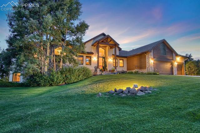 845 E Kings Deer Point, Monument, CO 80132 (#8386605) :: Jason Daniels & Associates at RE/MAX Millennium