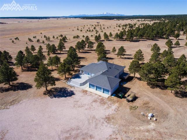 18200 N Meridian Road, Elbert, CO 80106 (#8387060) :: RE/MAX Advantage