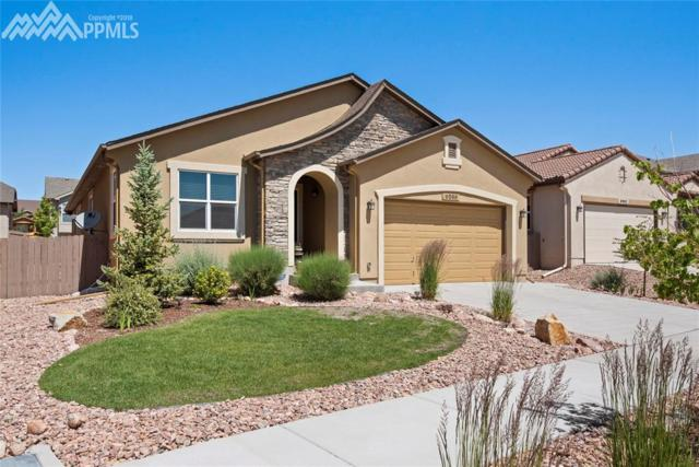 9056 Rollins Pass Court, Colorado Springs, CO 80924 (#8387385) :: 8z Real Estate