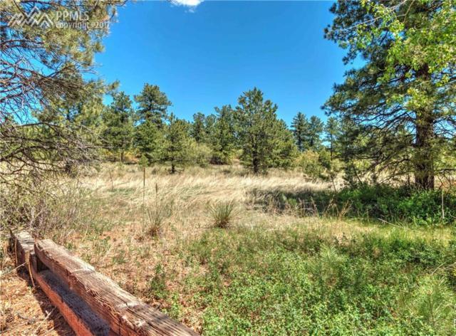 Woodmen Court, Colorado Springs, CO 80919 (#8387392) :: 8z Real Estate