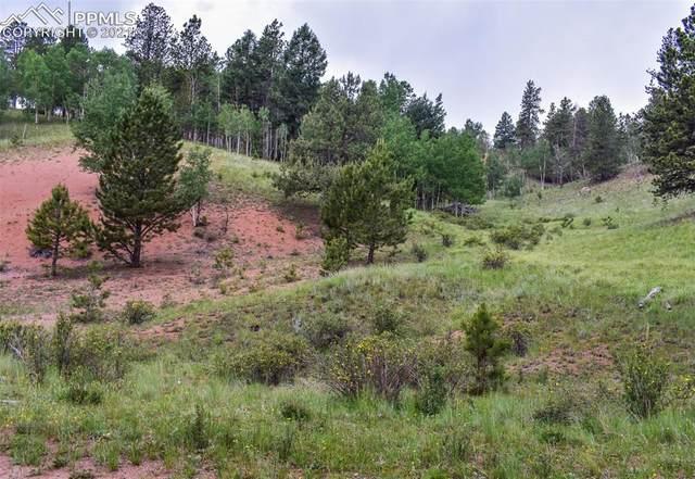 85 Silver Way, Cripple Creek, CO 80813 (#8387398) :: The Treasure Davis Team | eXp Realty