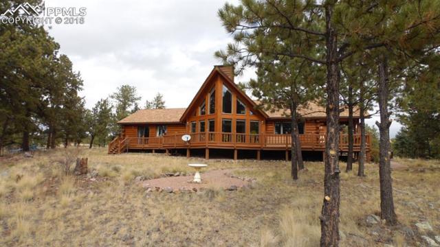 930 Doe Valley Road, Guffey, CO 80820 (#8390591) :: 8z Real Estate