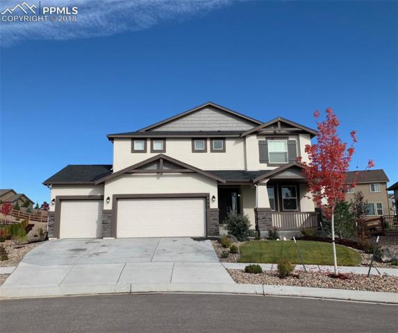 5466 Leon Young Drive, Colorado Springs, CO 80924 (#8391072) :: Fisk Team, RE/MAX Properties, Inc.