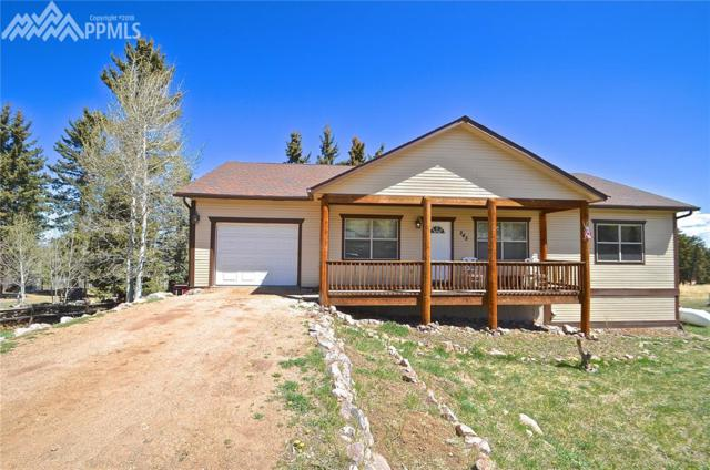 245 Maid Marian Drive, Divide, CO 80814 (#8394486) :: 8z Real Estate