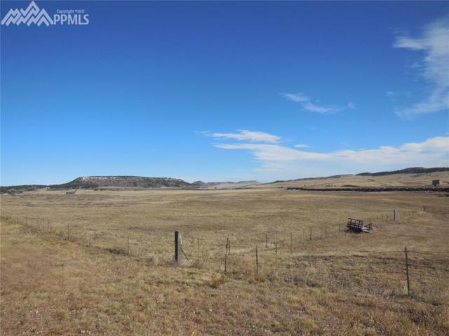15744 S Perry Park Road, Larkspur, CO 80118 (#8394659) :: 8z Real Estate