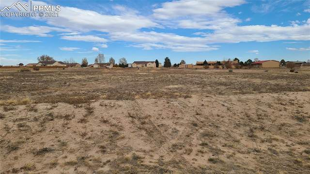 1031 W Mcculloch Boulevard, Pueblo West, CO 81007 (#8398909) :: The Harling Team @ HomeSmart