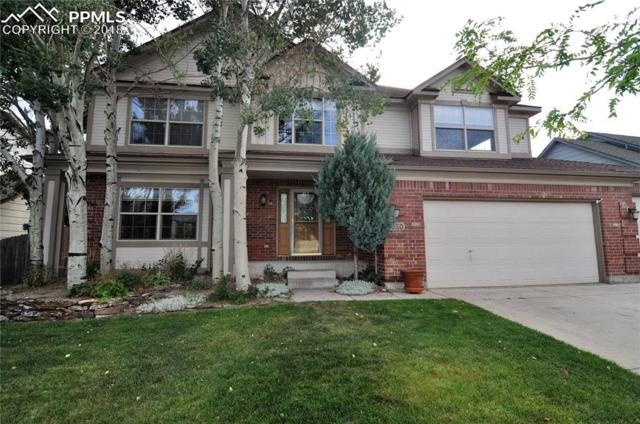 9030 Tuscany Way, Colorado Springs, CO 80920 (#8405566) :: 8z Real Estate
