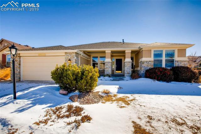 10211 Murmuring Pine Court, Colorado Springs, CO 80920 (#8411761) :: The Kibler Group