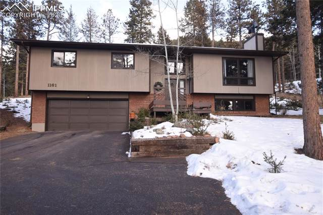1161 Pine Ridge Road, Woodland Park, CO 80863 (#8412312) :: Tommy Daly Home Team