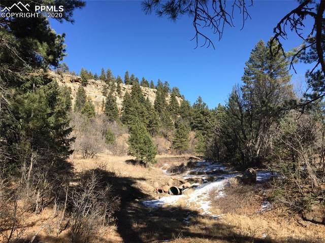 0 Hidden Creek Road, Rye, CO 81069 (#8413541) :: The Daniels Team