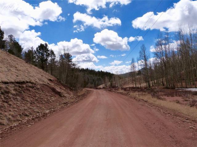 182 Granite Lane, Cripple Creek, CO 80813 (#8414682) :: Action Team Realty