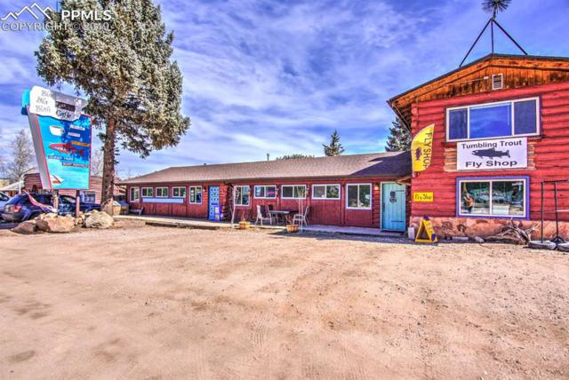 38283 W Highway 24 Highway, Lake George, CO 80827 (#8415837) :: Colorado Home Finder Realty