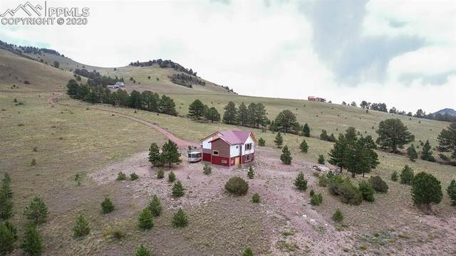 7042 Autumn Creek Drive, Canon City, CO 81212 (#8416455) :: Finch & Gable Real Estate Co.