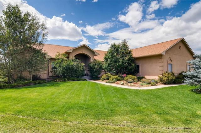 7431 Crow Court, Colorado Springs, CO 80908 (#8417213) :: Action Team Realty