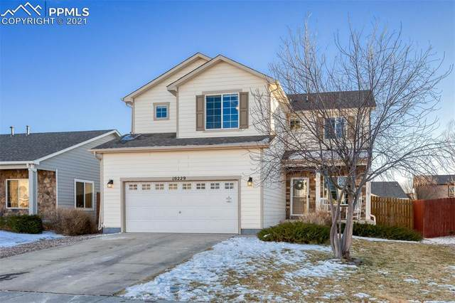 10229 Deer Meadow Circle, Colorado Springs, CO 80925 (#8417424) :: 8z Real Estate