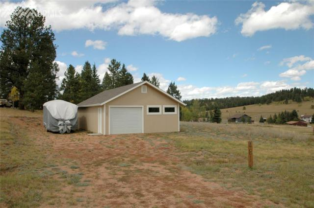 481 Trout Haven Road, Florissant, CO 80816 (#8419890) :: 8z Real Estate