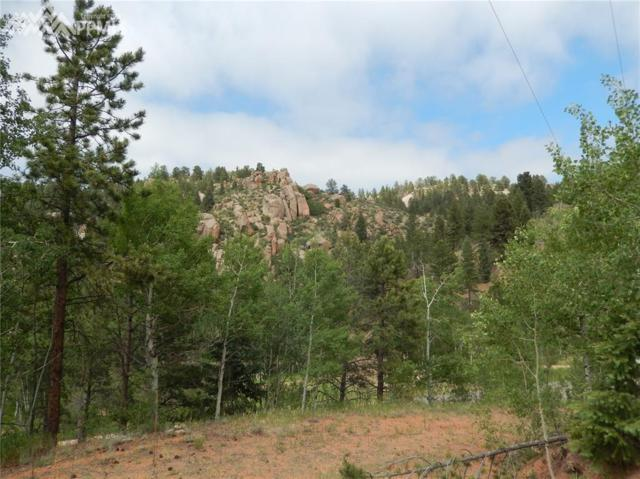 6621 County 1 Road, Cripple Creek, CO 80823 (#8420083) :: 8z Real Estate