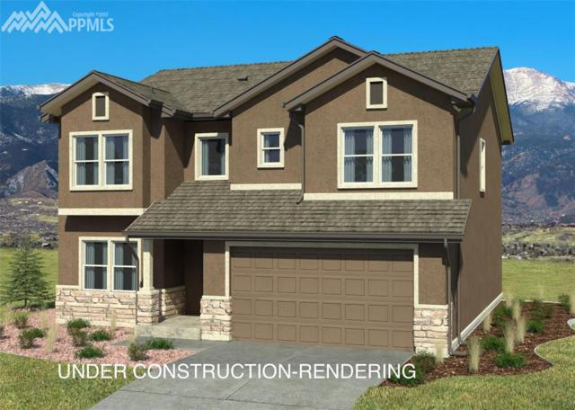 19523 Lindenmere Drive, Monument, CO 80132 (#8422926) :: 8z Real Estate