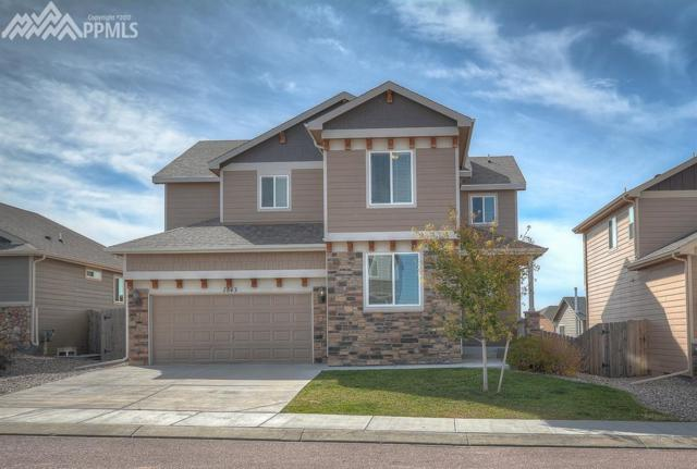 7843 Clymer Way, Fountain, CO 80817 (#8432524) :: Action Team Realty