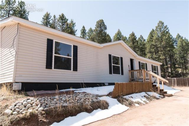 1530 Coyote Trail, Woodland Park, CO 80863 (#8438265) :: 8z Real Estate