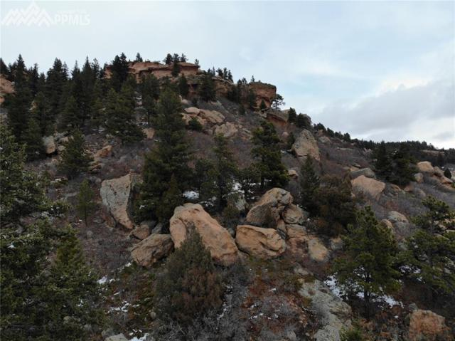 7 Cathedral Drive, Palmer Lake, CO 80133 (#8438970) :: Colorado Home Finder Realty