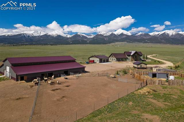 3200 County Road 129, Westcliffe, CO 81252 (#8440604) :: Fisk Team, RE/MAX Properties, Inc.