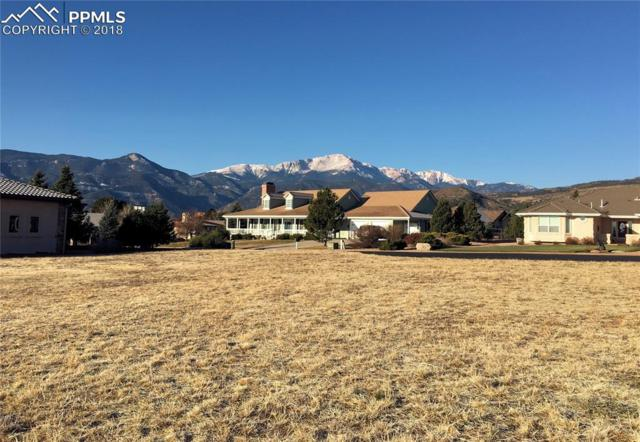 3915 Star Rise Point, Colorado Springs, CO 80904 (#8441605) :: Colorado Home Finder Realty