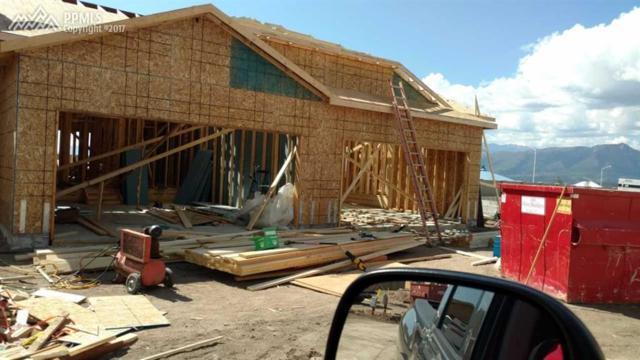 11459 Rill Point, Colorado Springs, CO 80921 (#8441761) :: 8z Real Estate