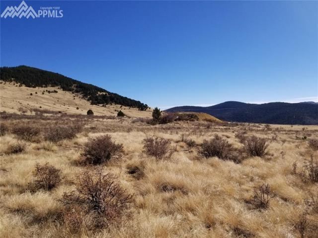 TBD Monarch Drive, Cripple Creek, CO 80813 (#8444761) :: The Treasure Davis Team