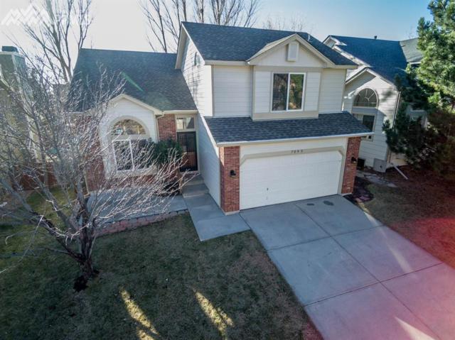 7095 Native Circle, Colorado Springs, CO 80919 (#8444813) :: RE/MAX Advantage