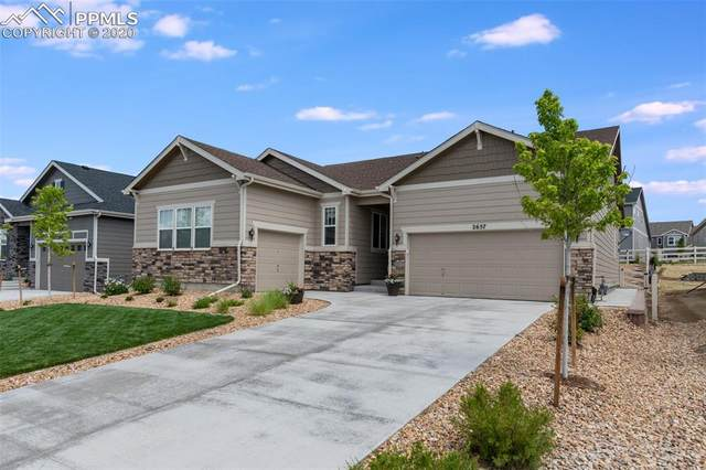 2657 Echo Park Drive, Castle Rock, CO 80104 (#8447302) :: 8z Real Estate