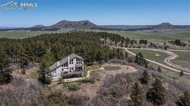 12592 Greenland Acres Road, Larkspur, CO 80118 (#8451042) :: Tommy Daly Home Team