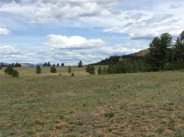 000 Highway 24, Lake George, CO 80827 (#8451254) :: 8z Real Estate