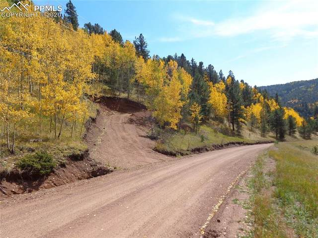 80 Beaver Pond Road, Divide, CO 80814 (#8451401) :: The Treasure Davis Team