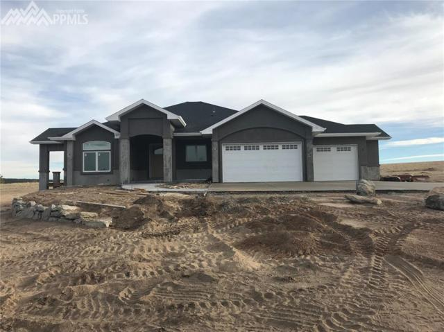 1705 Trumpeters Court, Monument, CO 80132 (#8456594) :: 8z Real Estate