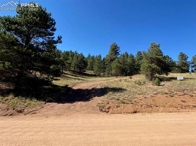 1035 W Bison Creek Trail, Florissant, CO 80816 (#8456934) :: Action Team Realty