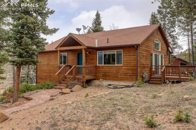 186 Grizzly Peak Drive, Florissant, CO 80816 (#8456959) :: Venterra Real Estate LLC
