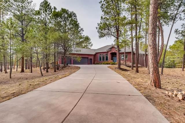 12804 Fulford Court, Colorado Springs, CO 80908 (#8460881) :: CC Signature Group