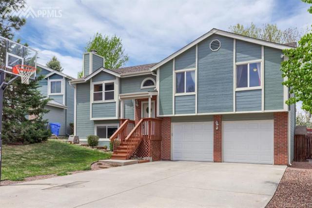 6130 Amber Way, Colorado Springs, CO 80918 (#8462202) :: Fisk Team, RE/MAX Properties, Inc.