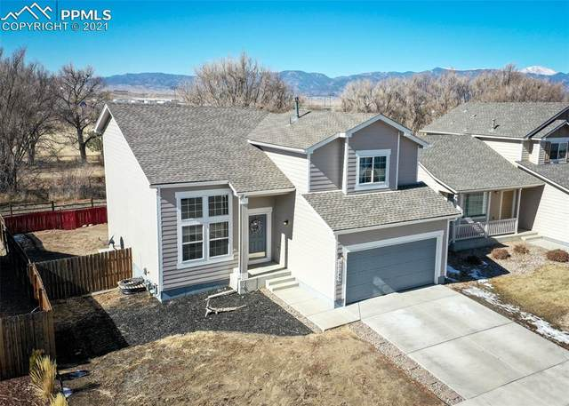 11145 Falling Star Road, Fountain, CO 80817 (#8462829) :: Realty ONE Group Five Star