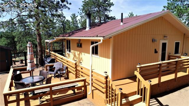 453 Buckridge Road, Florissant, CO 80816 (#8470278) :: Jason Daniels & Associates at RE/MAX Millennium