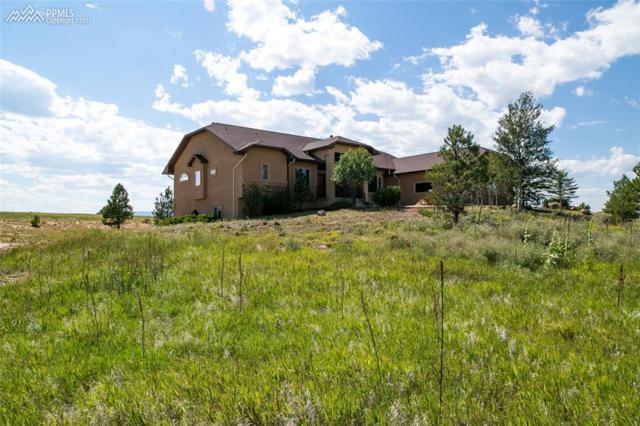19959 Glen Shadows Drive, Colorado Springs, CO 80908 (#8471658) :: 8z Real Estate